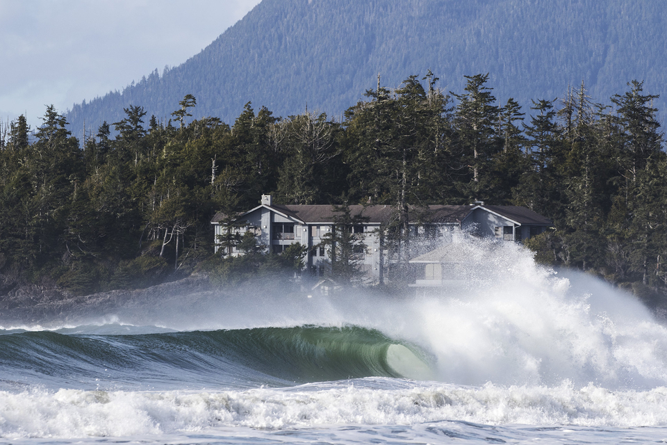 Tofino is a wonderfully rich tapestry.