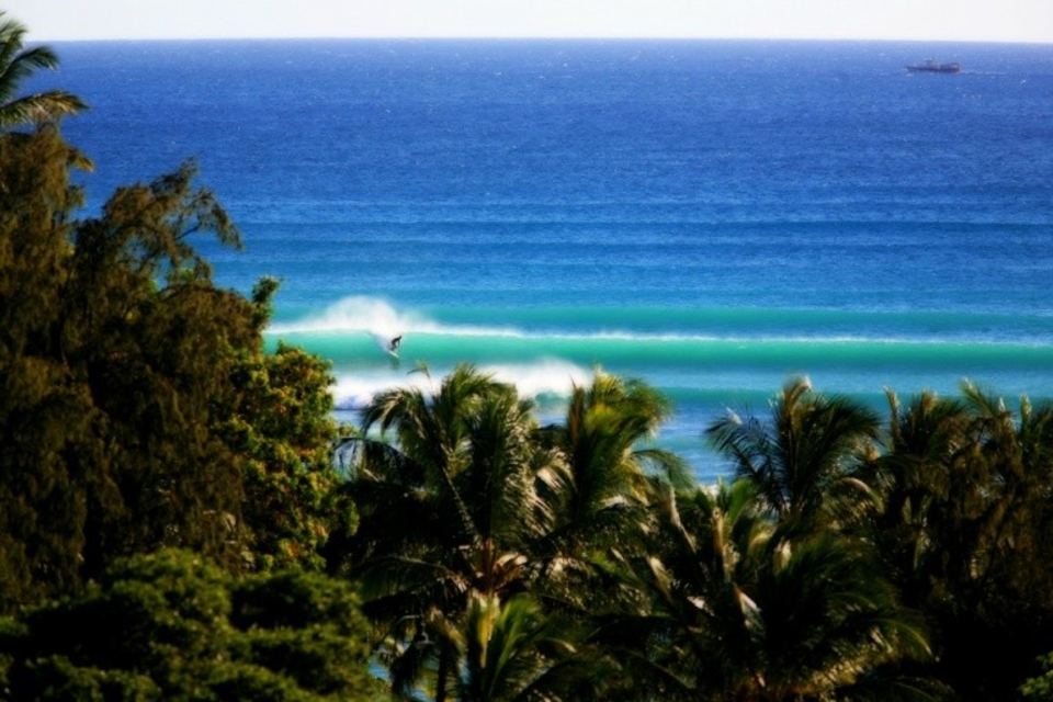 The incident happened in small surf off the south shore of Oahu, which is also home to Waikiki.