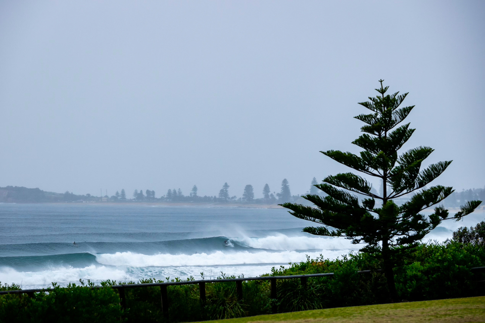 The early pulse was pure enough to make South Narrabeen appear to be a Queensland point break.